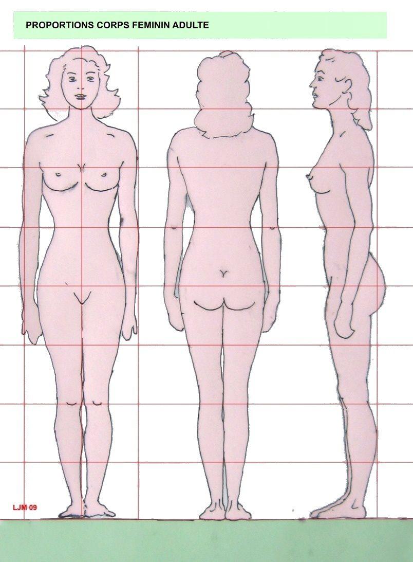 Dessin Corps Homme representation du corps humain - les bases du dessin  et de la