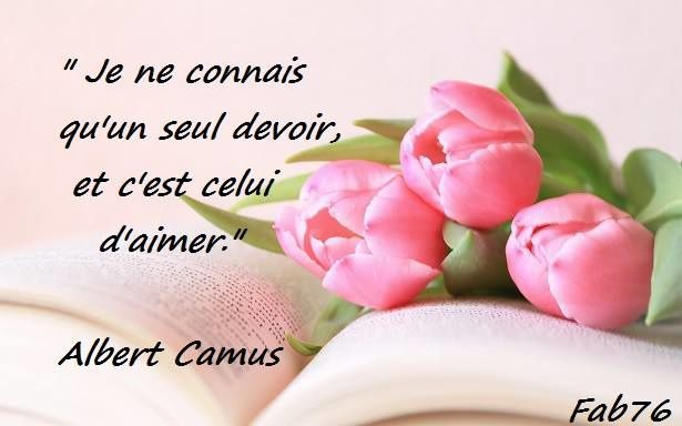 Citation d'Albert Camus sur l'art d'aimer
