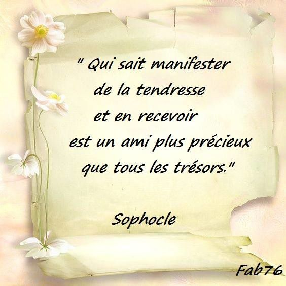 Citation de Sophocle sur la tendresse
