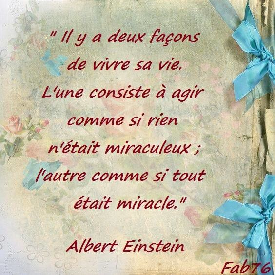 Citation d'Albert Einstein sur le sens à donner à sa vie