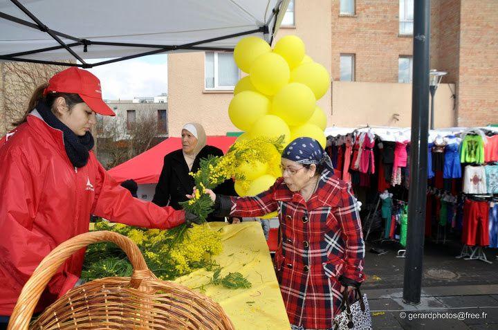 Fête du mimosa 2014 sur le marché de Cergy