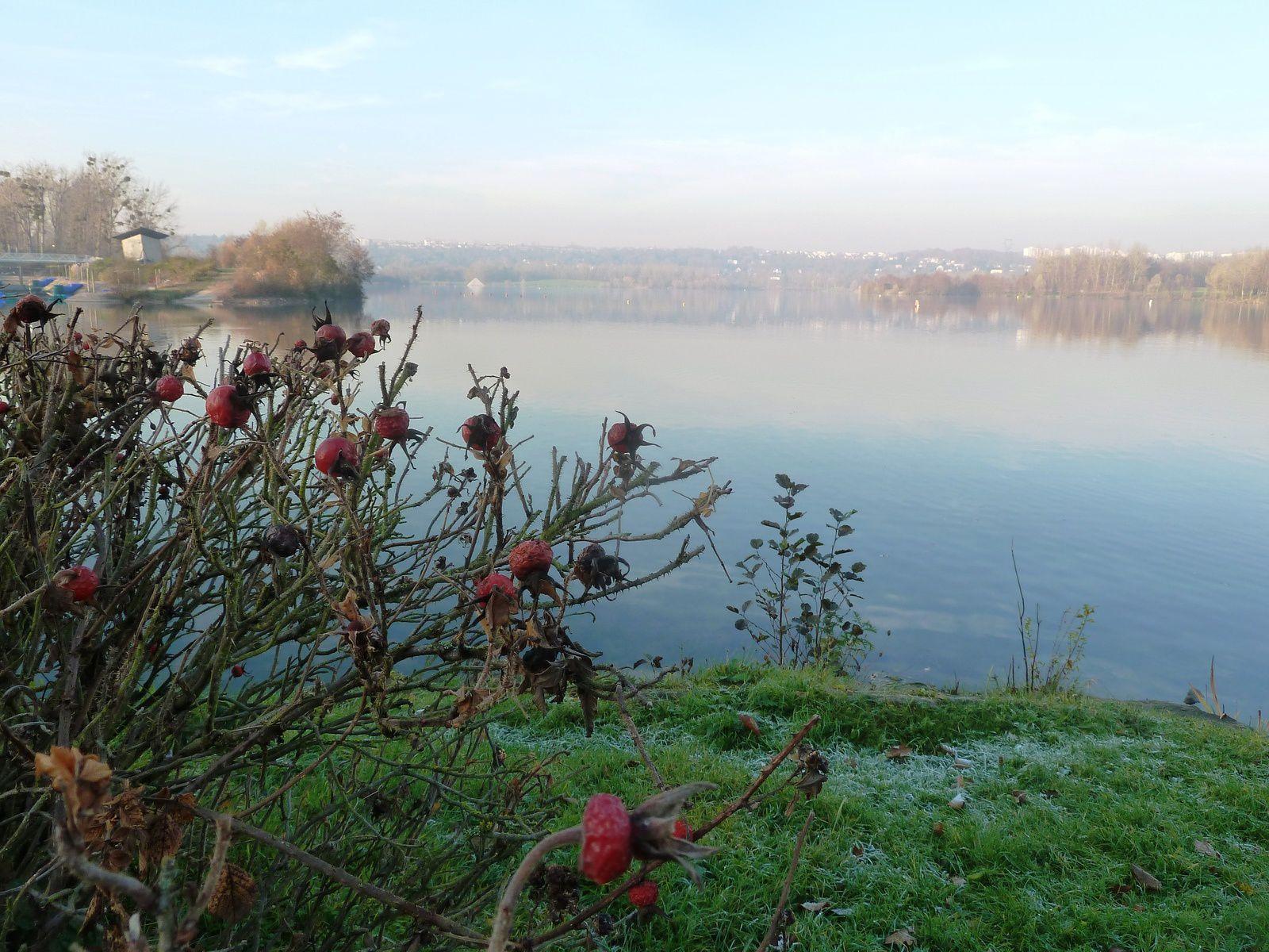 Les étangs de Cergy sous un léger brouillard