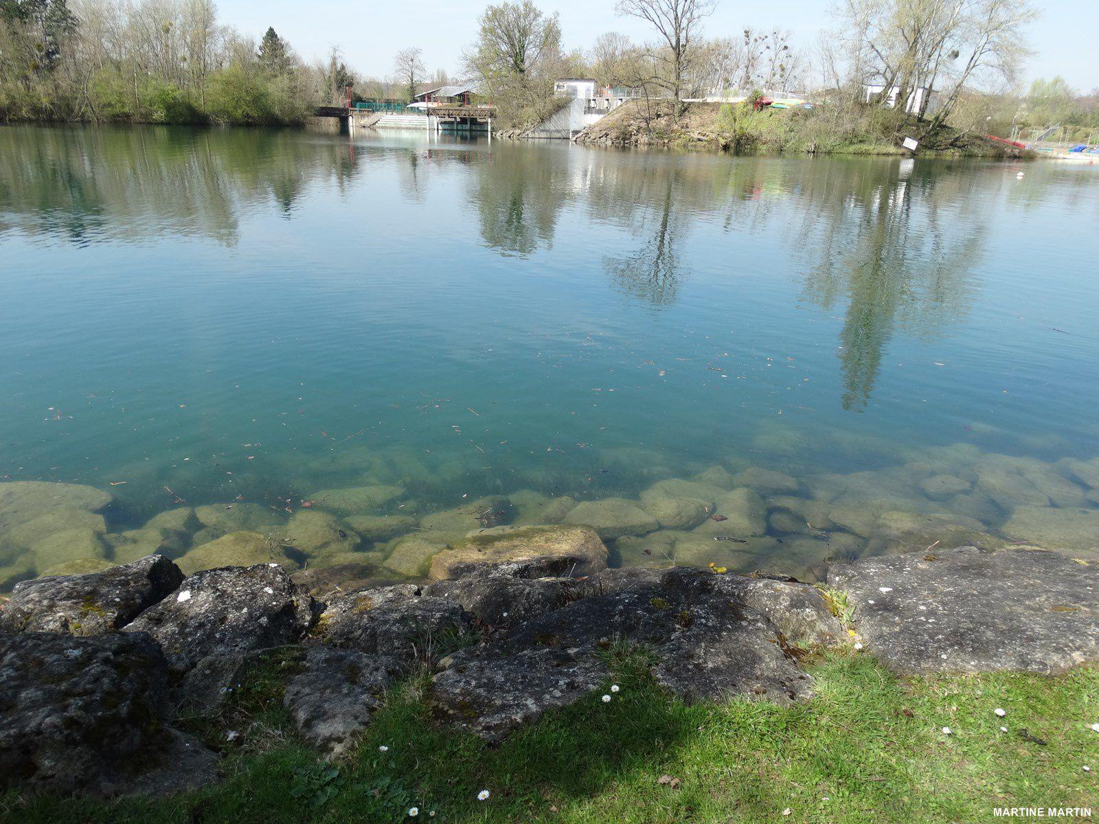 Reflets d'arbres aux étangs de Cergy