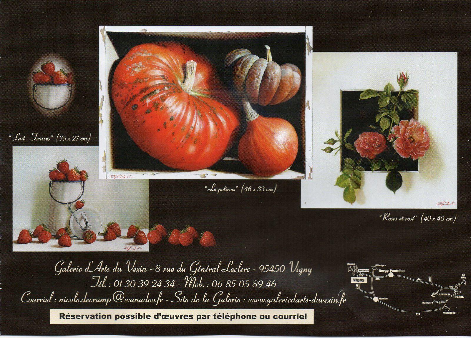 Philippe DESTORS expose à la galerie du Vexin