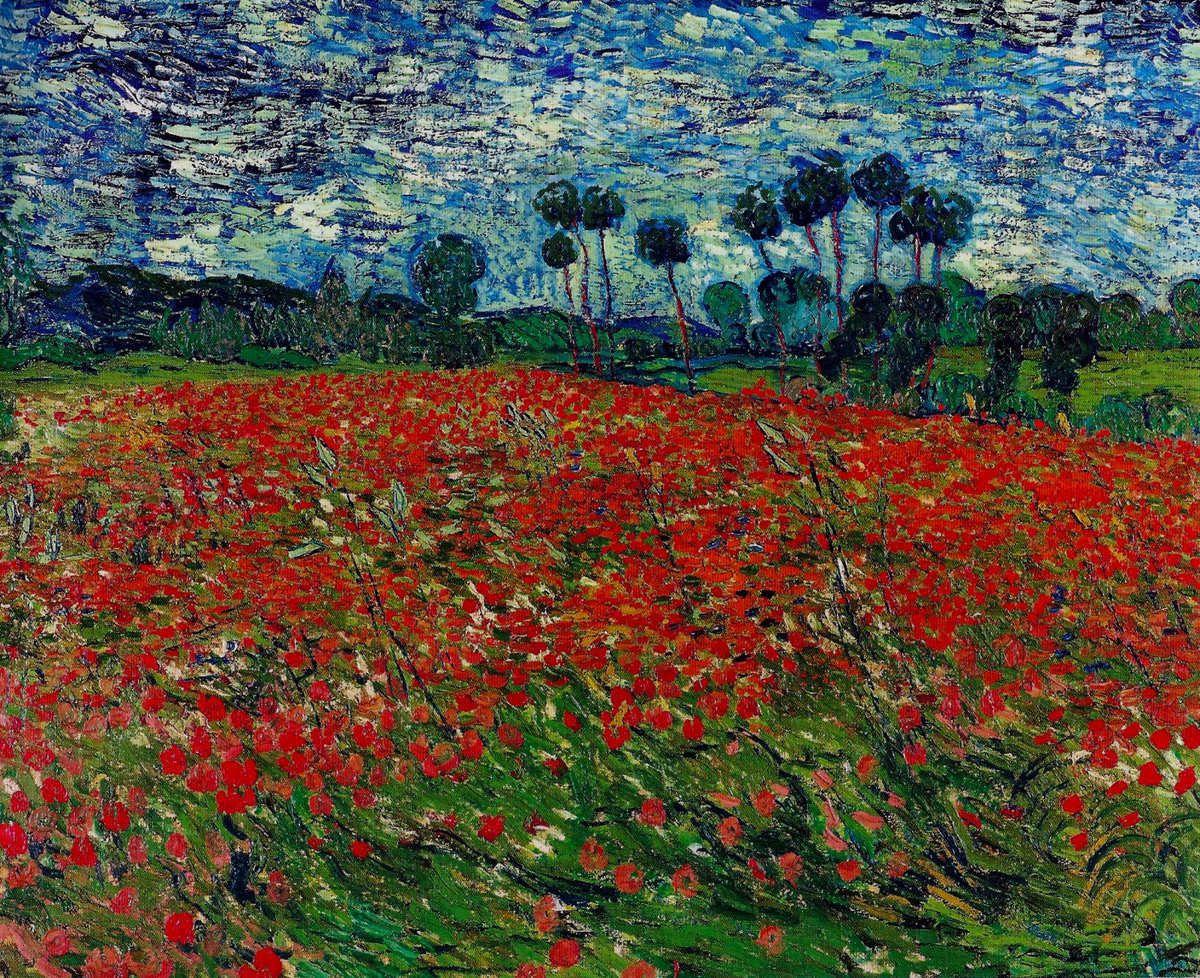 Jolis coquelicots Monsieur Van Gogh