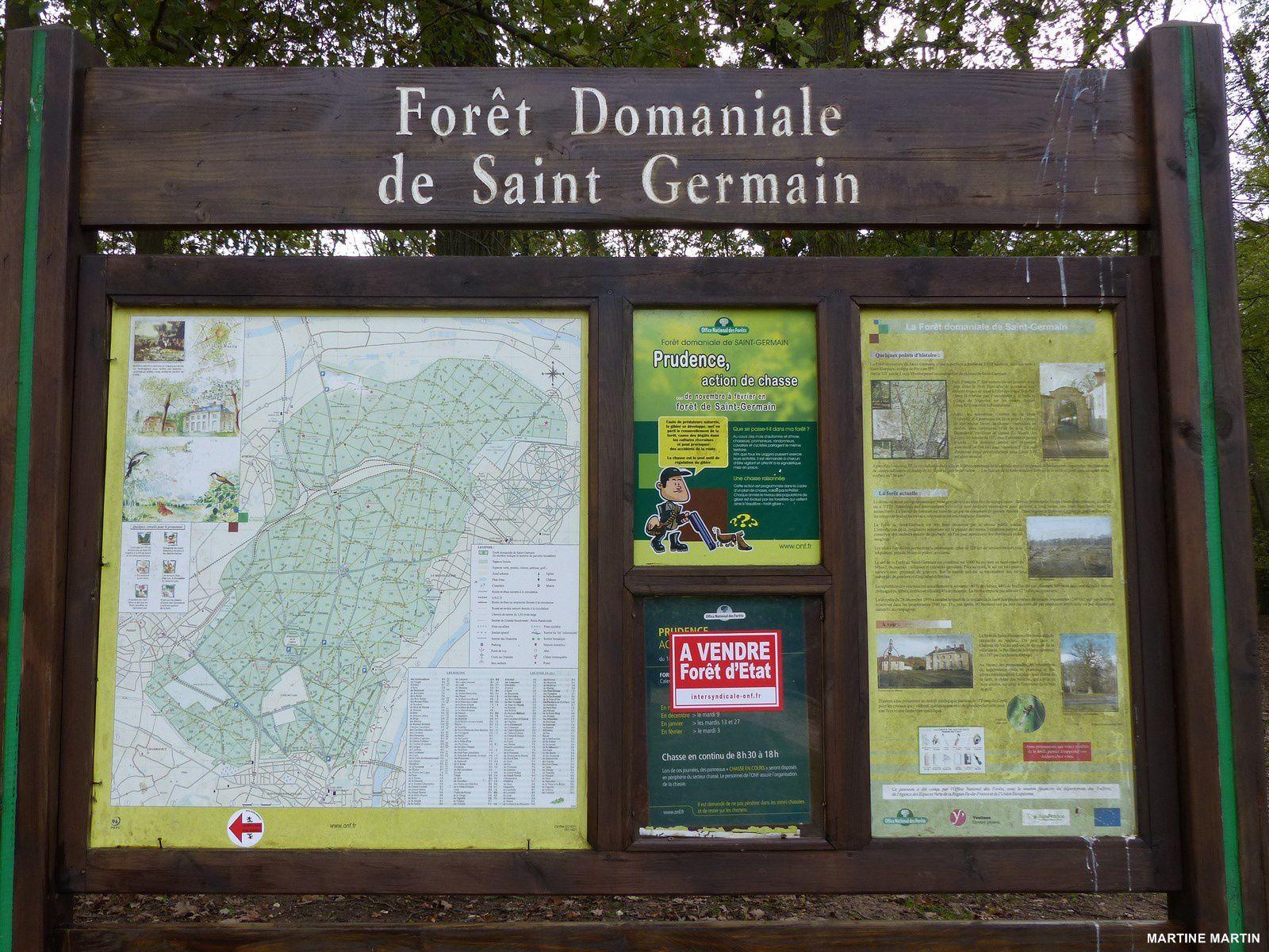 Promenade en for t de saint germain en laye cergyrama - Foret saint germain en laye plan ...