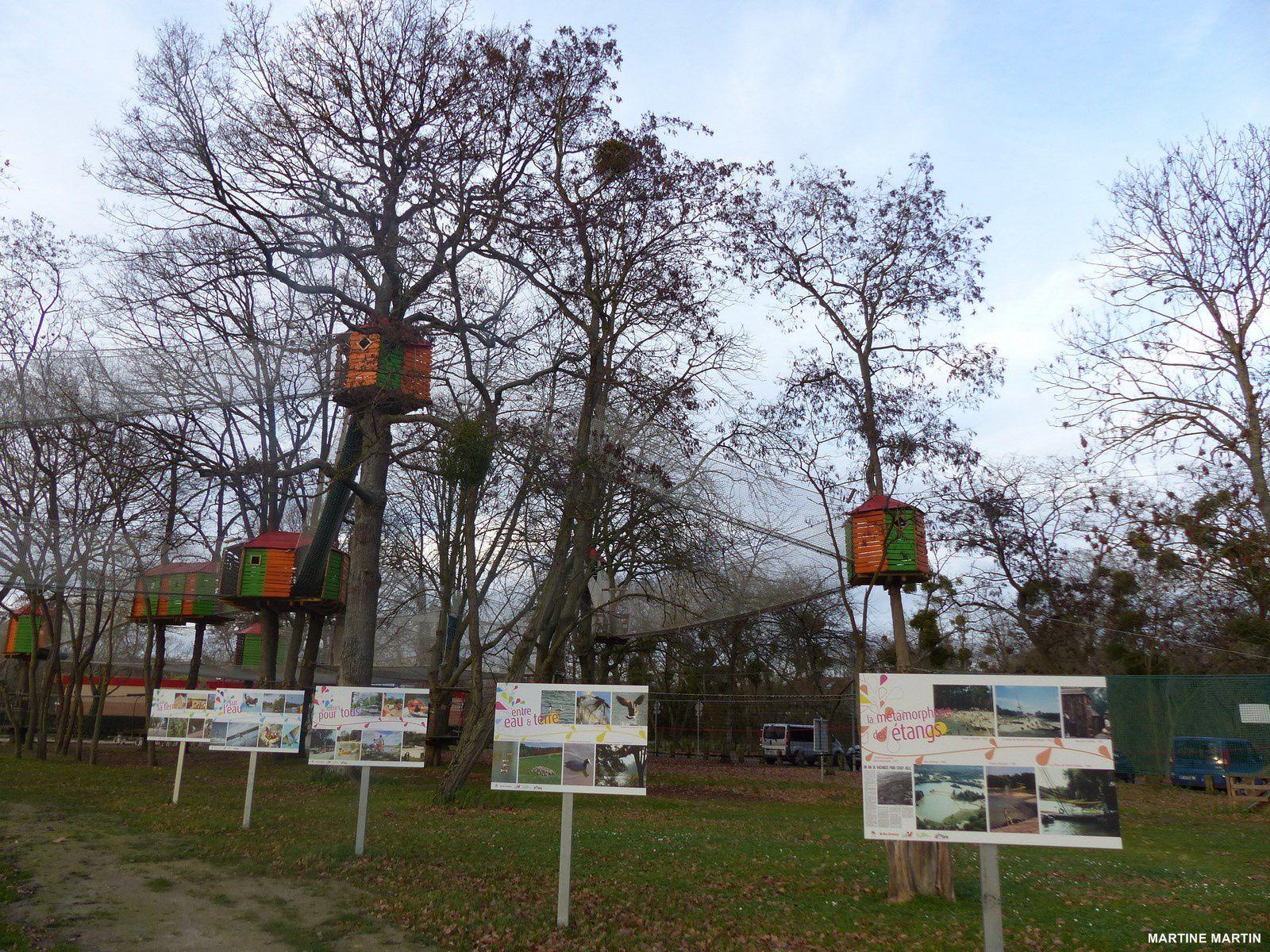 Parcours accrobranche pour les enfants à Cergy
