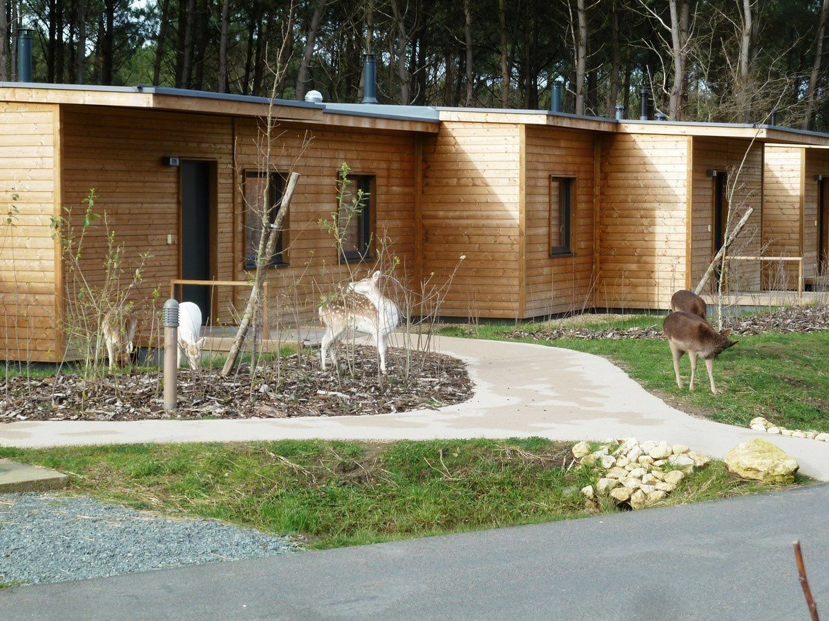 Center parc de la vienne le bois aux Daims CERGYRAMA # Restaurant Center Parc Bois Aux Daims