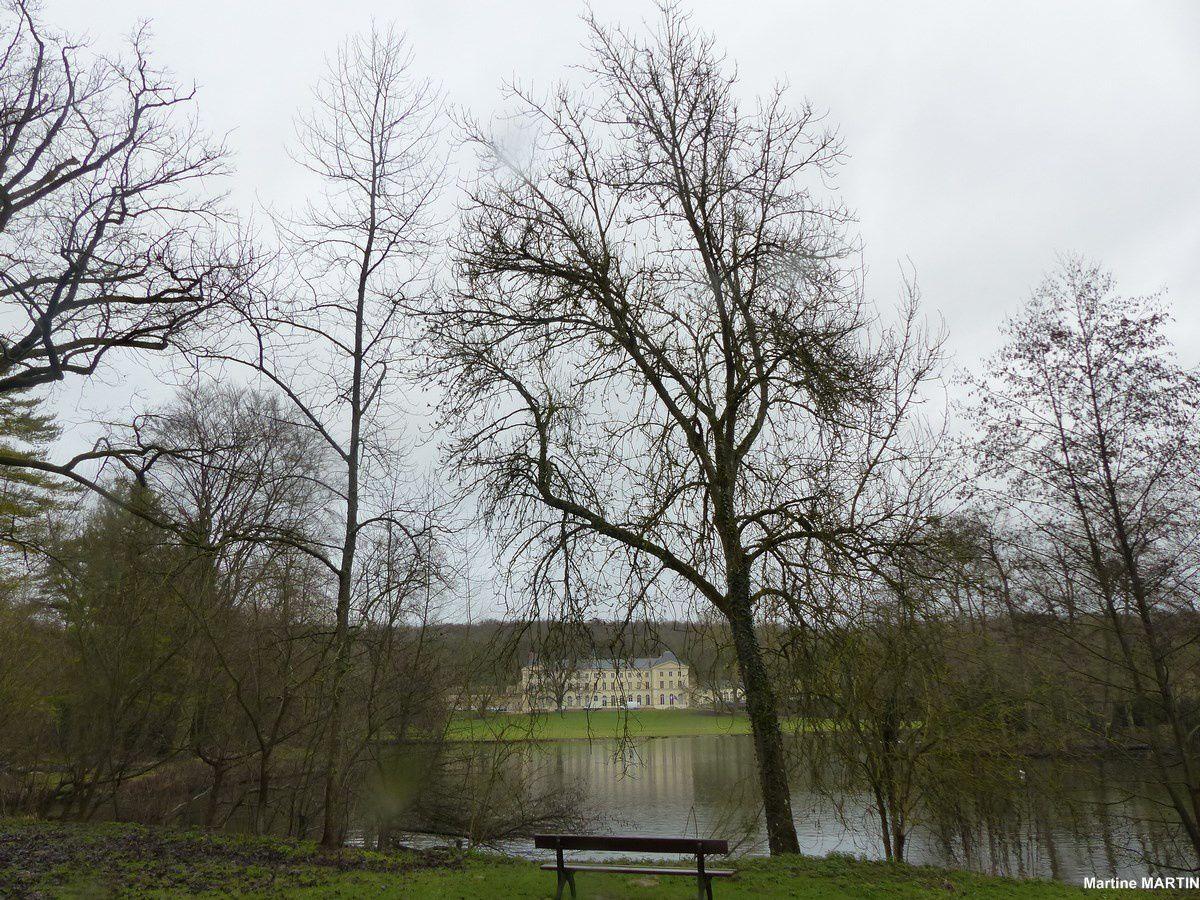 Les arbres l'hiver au parc de Grouchy à Osny