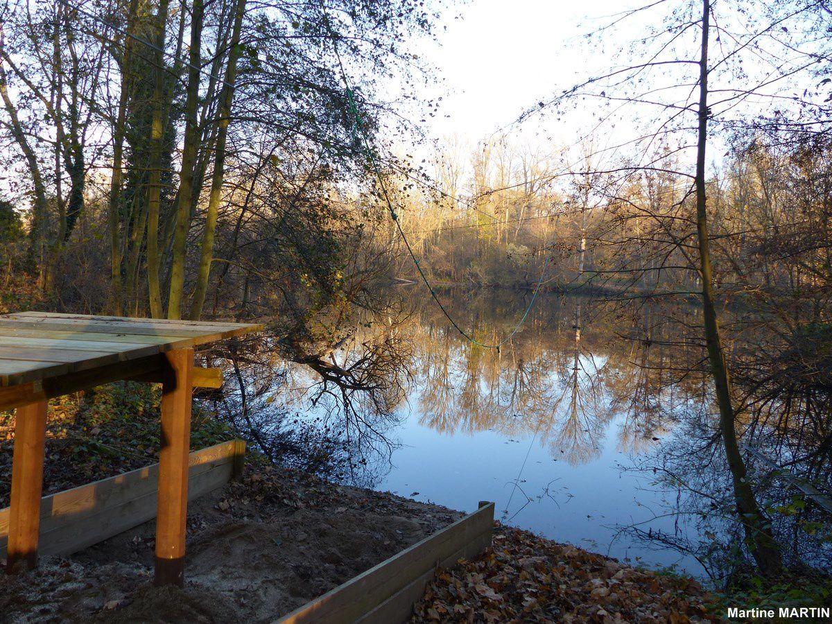 Les étangs de Cergy en décembre