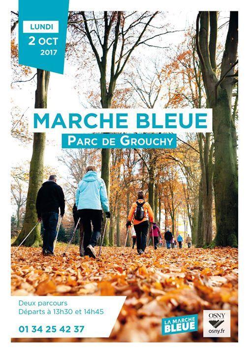 Randonnée : Marche bleue à Osny