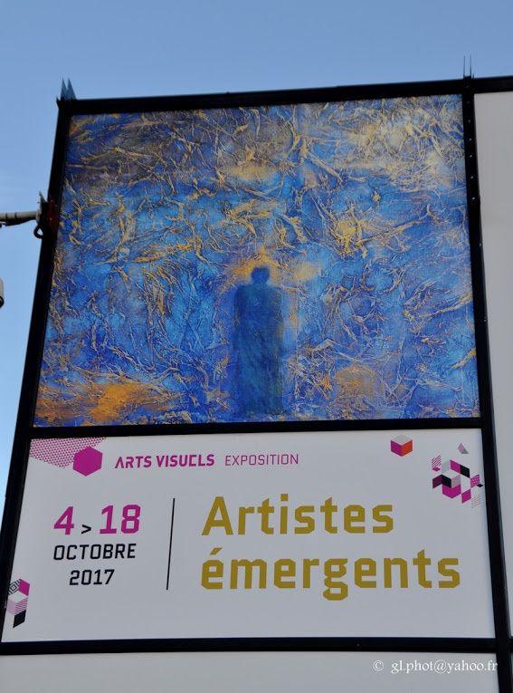 Photos vernissage Exposition Artistes émergents au Carreau de Cergy.
