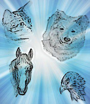 L'esprit et l'âme des animaux aident les humains dans leur évolution.