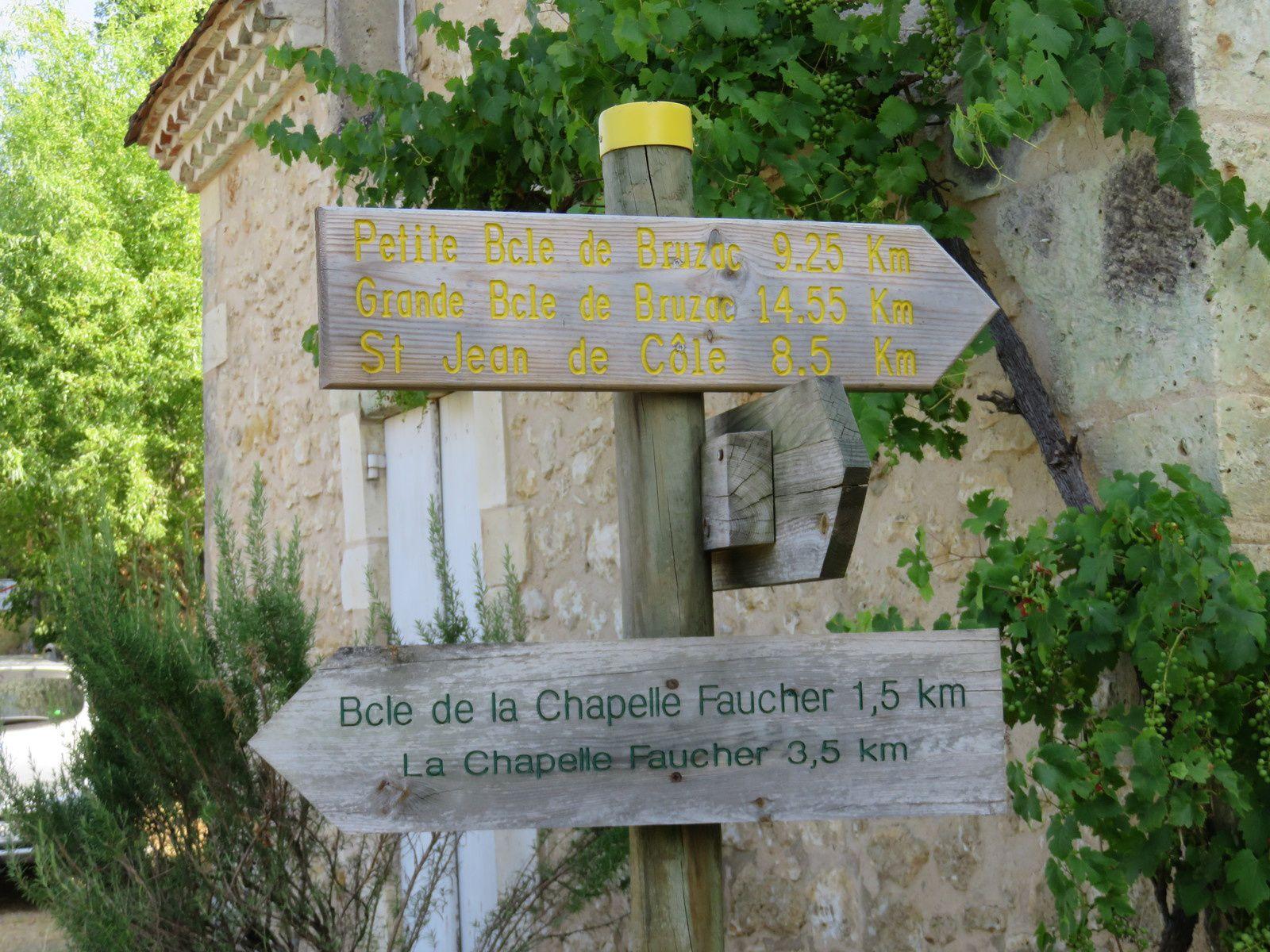 RANDONNEE EN DORDOGNE / SENTIER DE ST PIERRE DE COLE / TOURISME