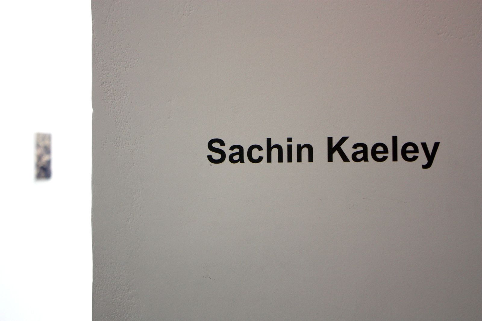 Expo Peinture Contemporaine: Sachin KAELEY