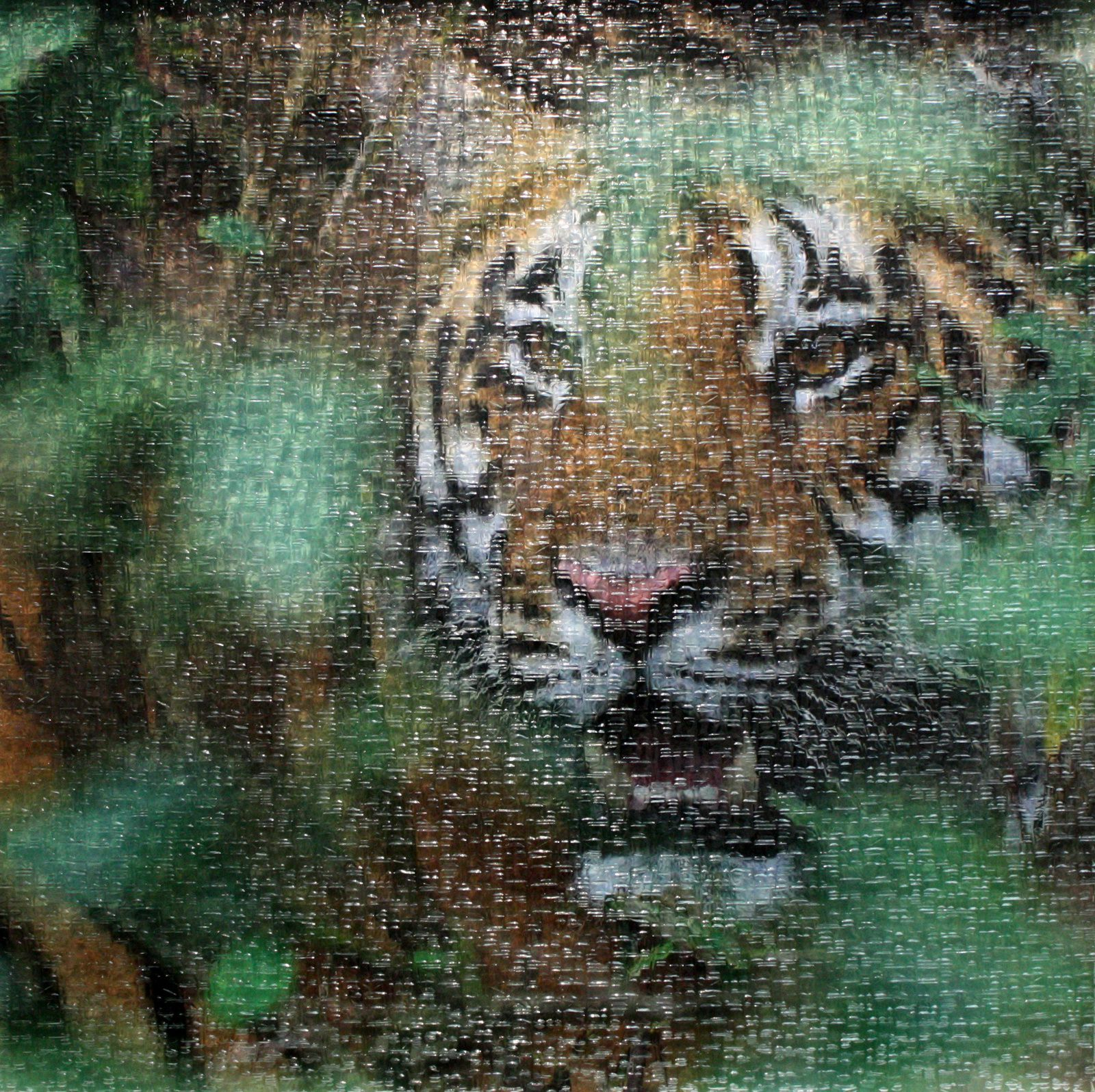 Thomas KNOLL (Tiger green Metallic + Abstracto), 2014