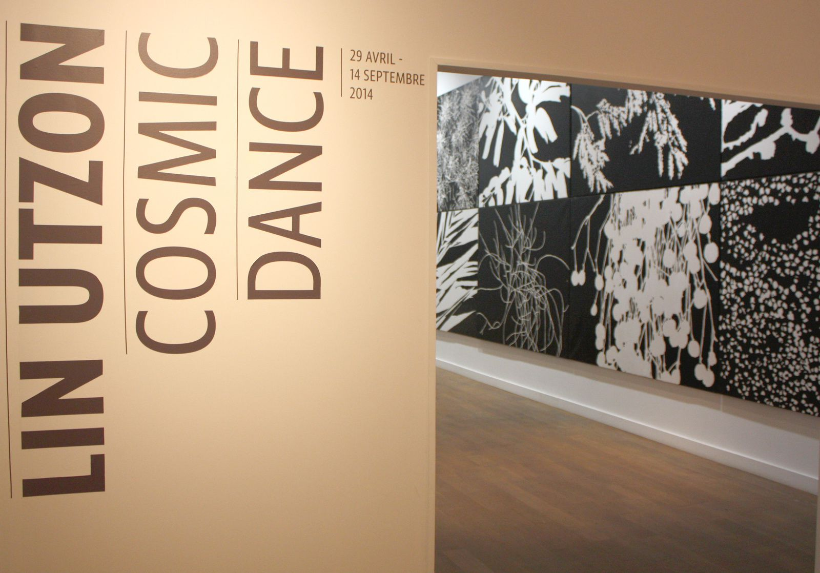 "Expo Solo Show: Lin Utzon ""Cosmic Dance"""