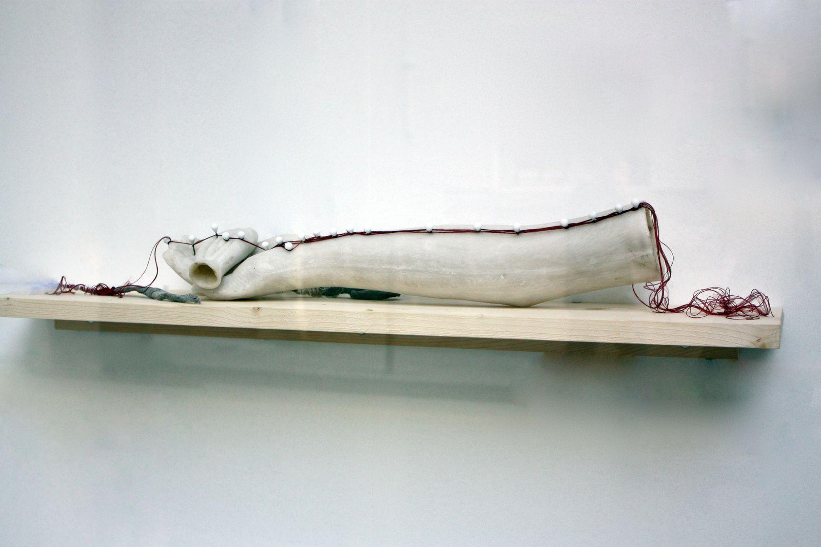 """""""Ex votu polarisation"""" de Myriam Mihindou"""