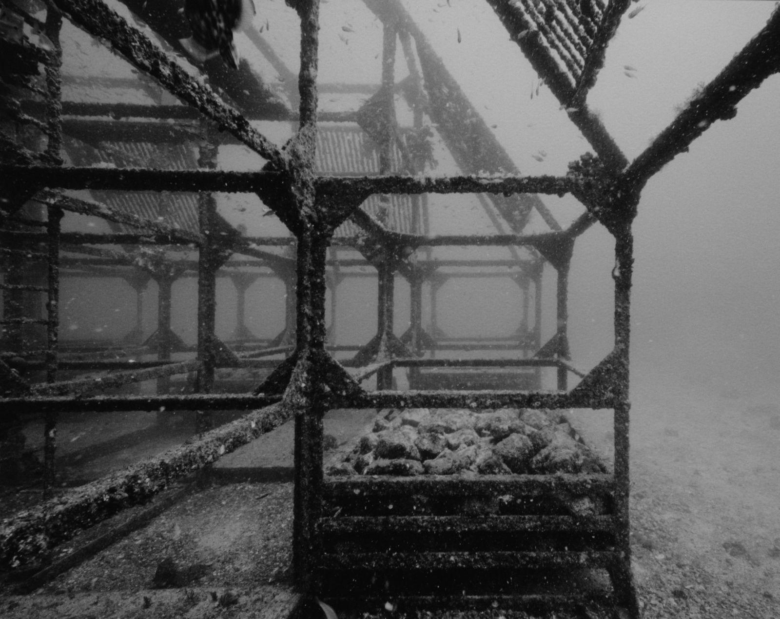 """""""Structures productives"""", 2013 de Nicolas Floc'h"""