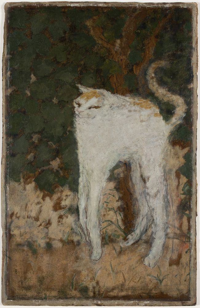"""Le chat Blanc"", 1894 de Pierre Bonnard"