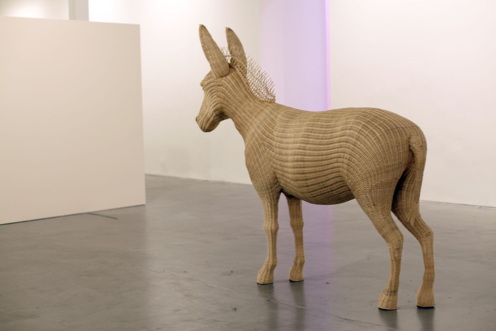 """Balthazar"", 2012 de Maï-Thu Perret - Courtesy VHH Gallery © Photo Éric Simon"
