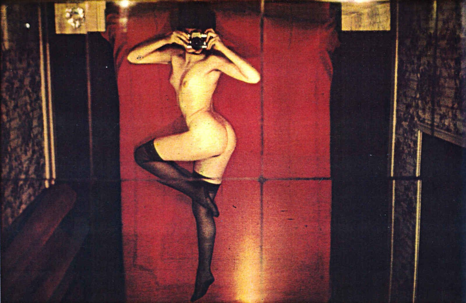 """Pin-up"", 1973 de Friedl Kubelka"