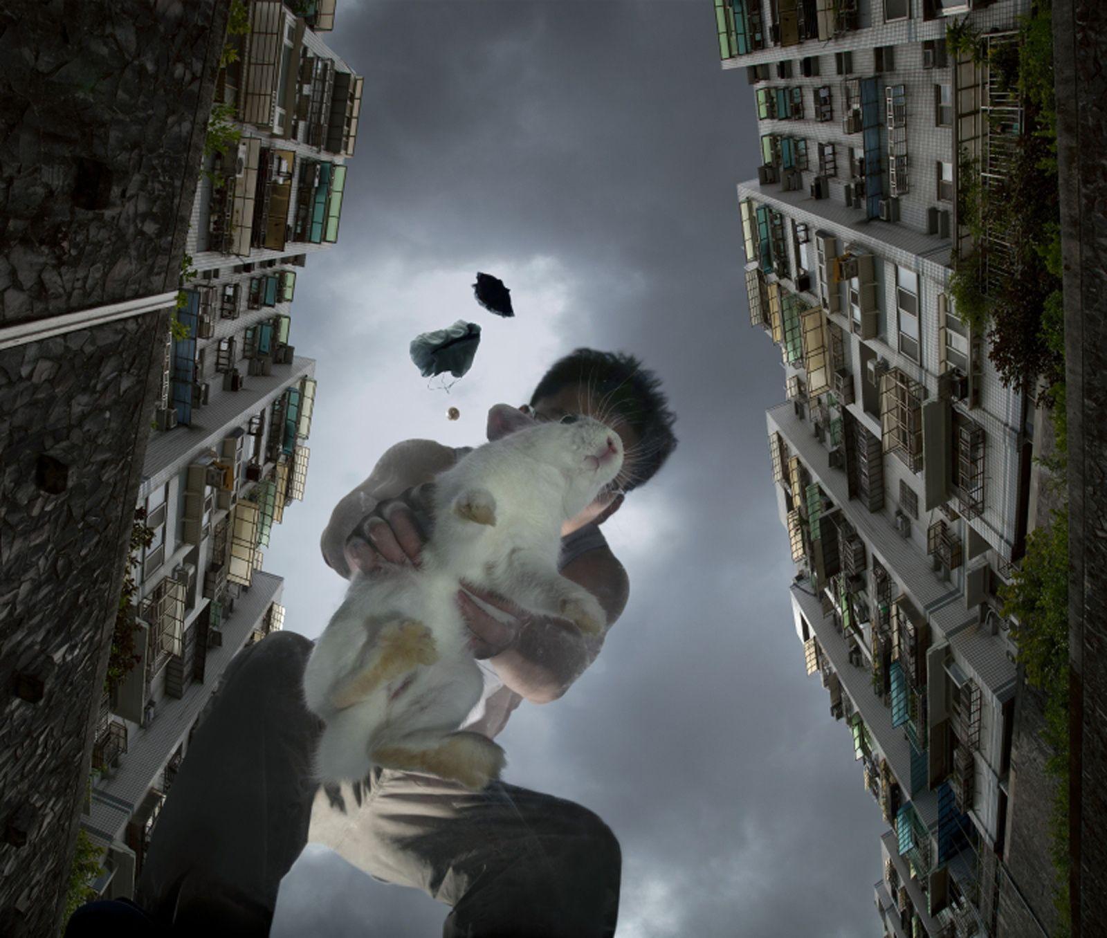 """""""Xiao-bai"""", 2011 de  Isa Ho"""