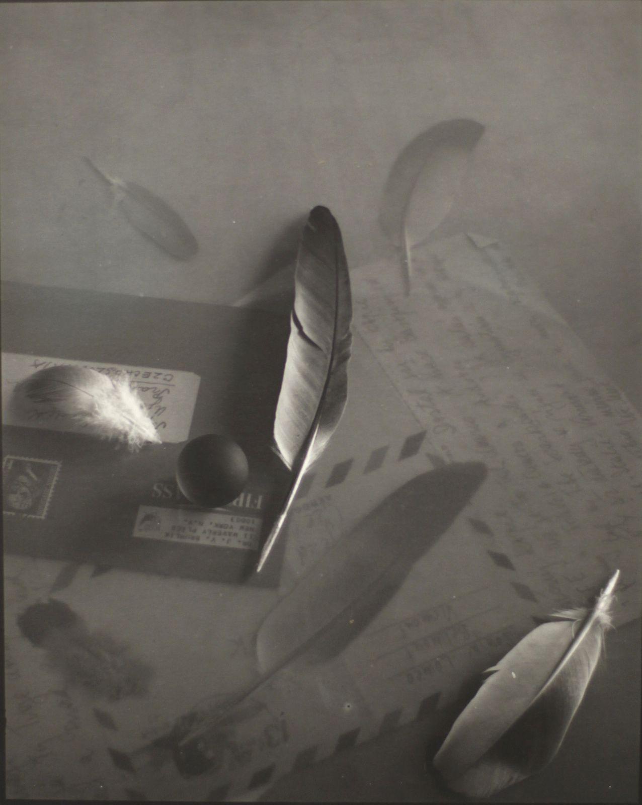 """""""Souvenir par poste aérienne pour le Dr Brumlik"""", 1971 de Josef SUDEK - Courtesy Jeu de Paume © Photo Eric Simon"""