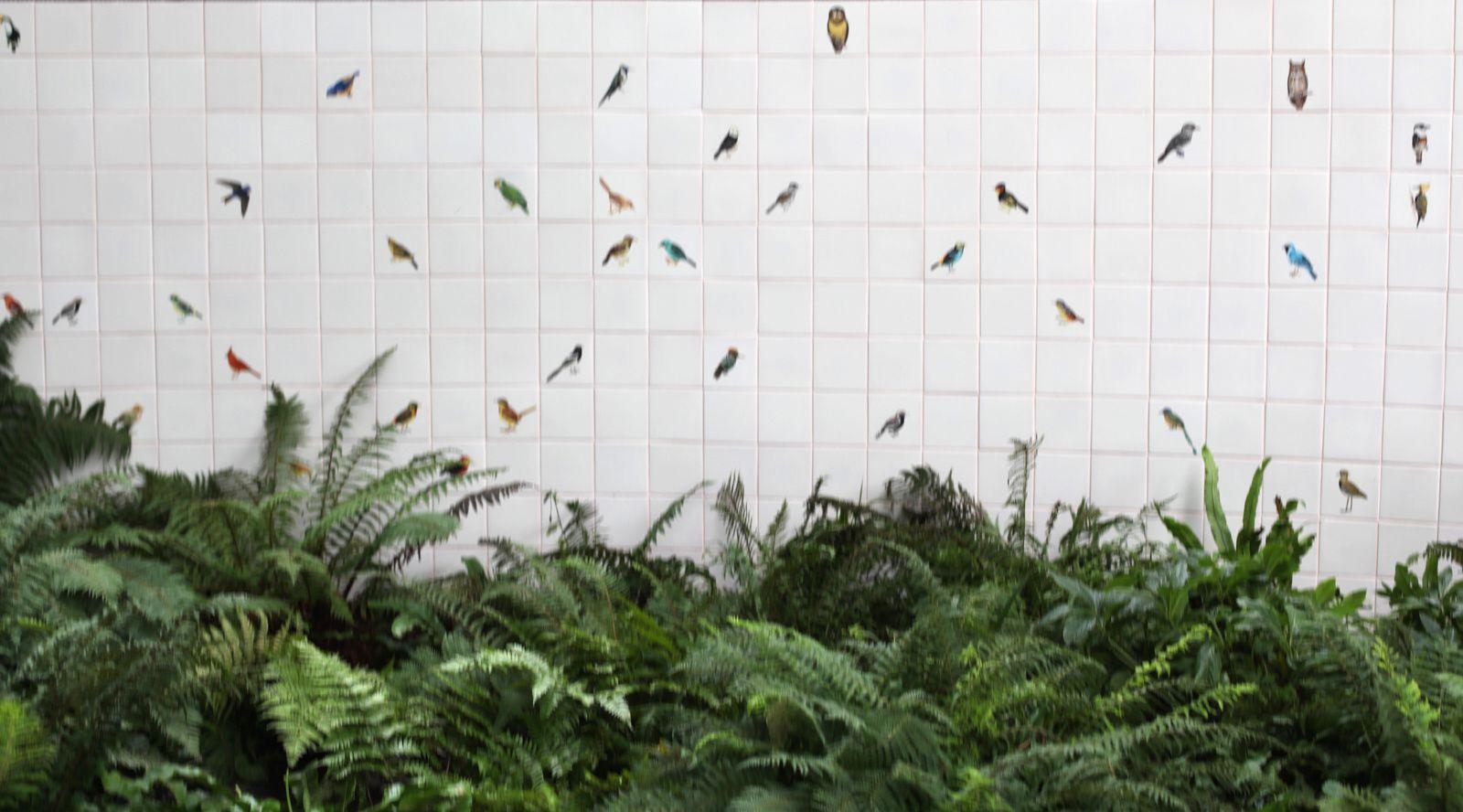 """""""Carreaux de céramique composée d'oiseaux peints"""" d'Adriana VAREJAO © Photo Éric Simon"""