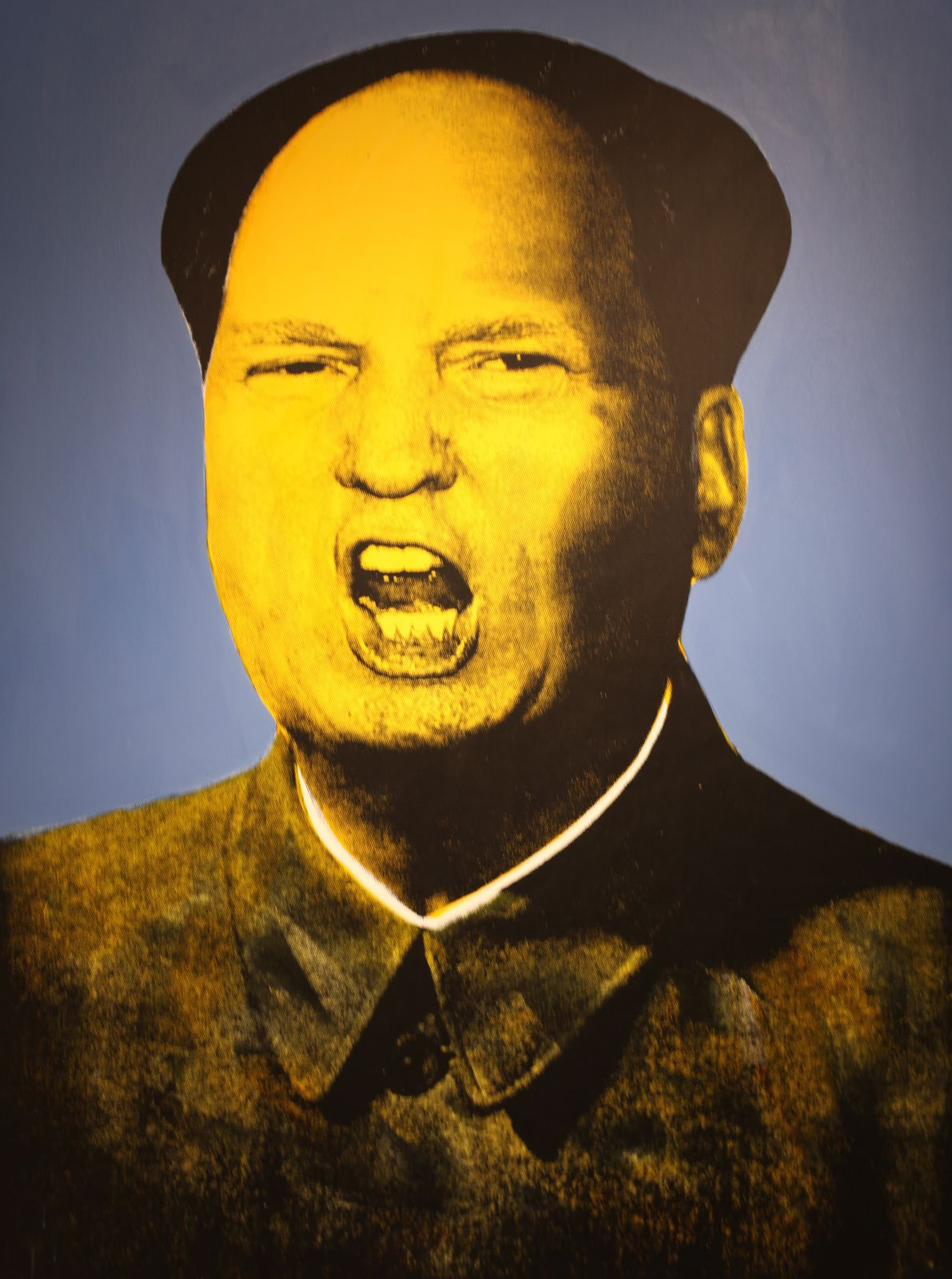 """""""Mao TRUMP"""", 2016 de Knowledge BENNETT - Courtesy Galerie Virginie Barrou Planquart © Photo Éric Simon"""