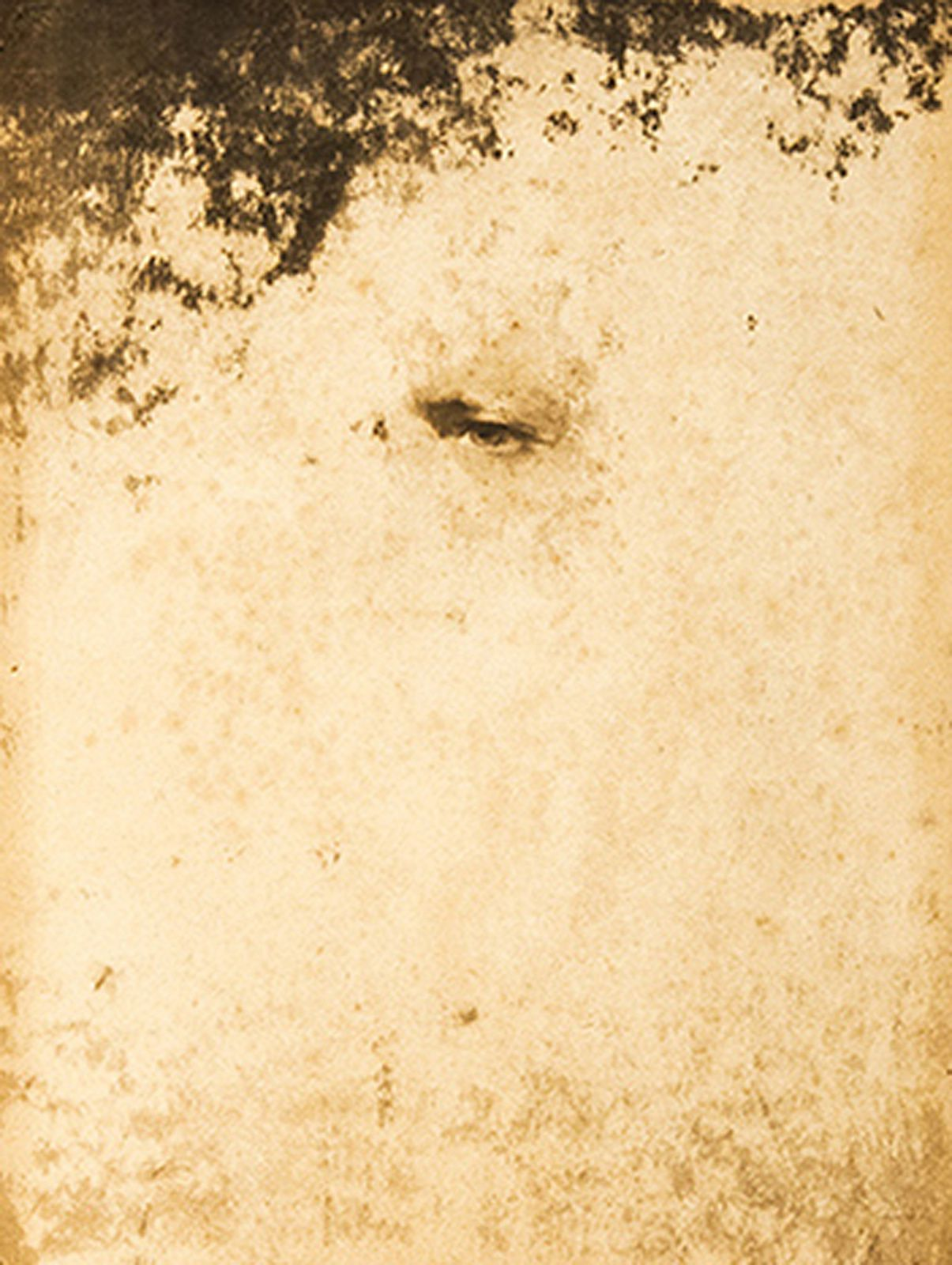 """Voyager"", 2015 de Varujan BOGHOSIAN - Courtesy Galerie Gabrielle Maubrie"