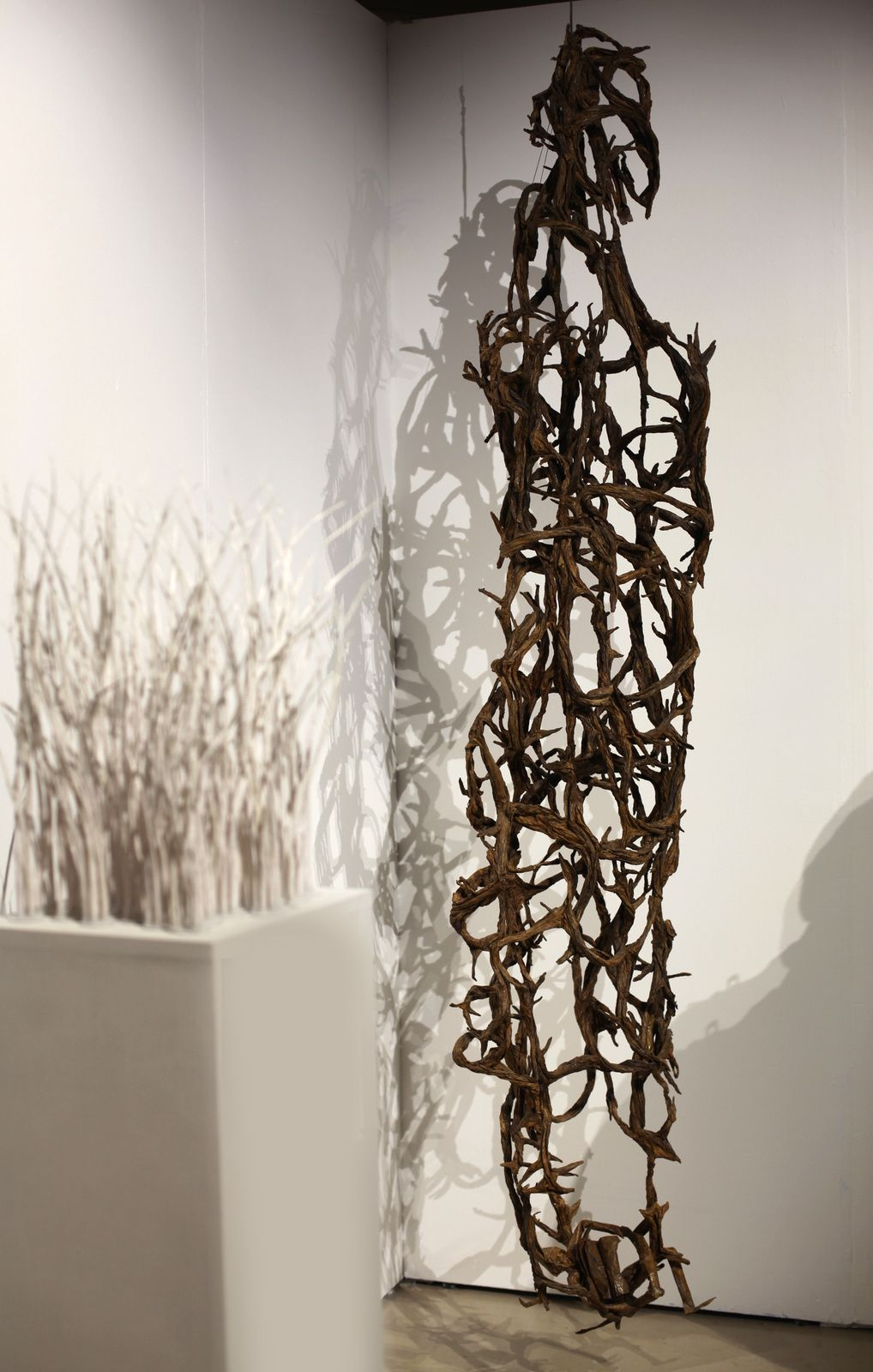 """Herbes folles"", 2014 et ""Mangrove"", 2012 de Frtiz JACQUET JUNIOR - Courtesy de l'Artiste © Photo Éric Simon"