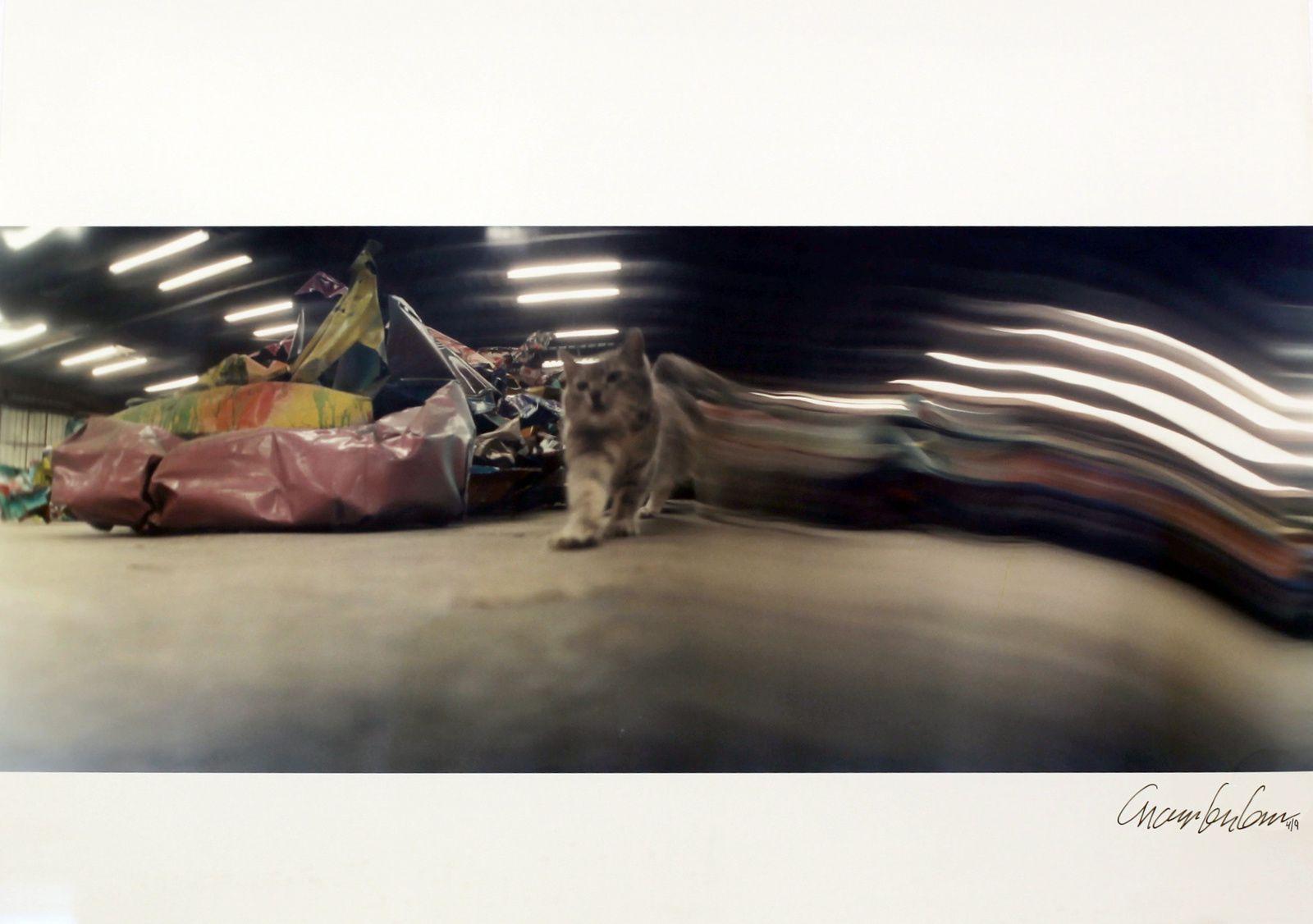 """""""Addapuss"""",  1989 de John CHAMBERLAIN - Courtesy Galerie Karsten Greve Paris  © Photo Éric Simon"""