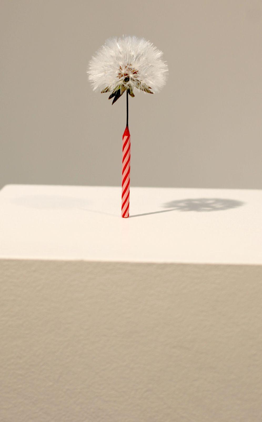 """Birth"", 2017 de MYEONGBEOM KIM - Courtesy Galerie Paris-Beijing © Photo Éric Simon"