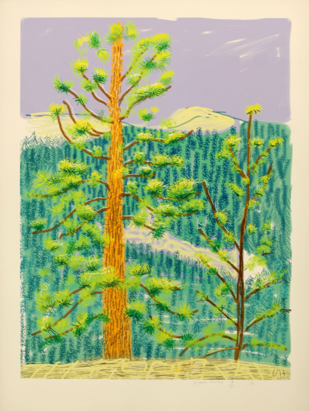 """Untitled N°8 from Yosemite"", 2010 de David HOCKNEY - Courtesy Galerie Lelong © Photo Éric Simon"