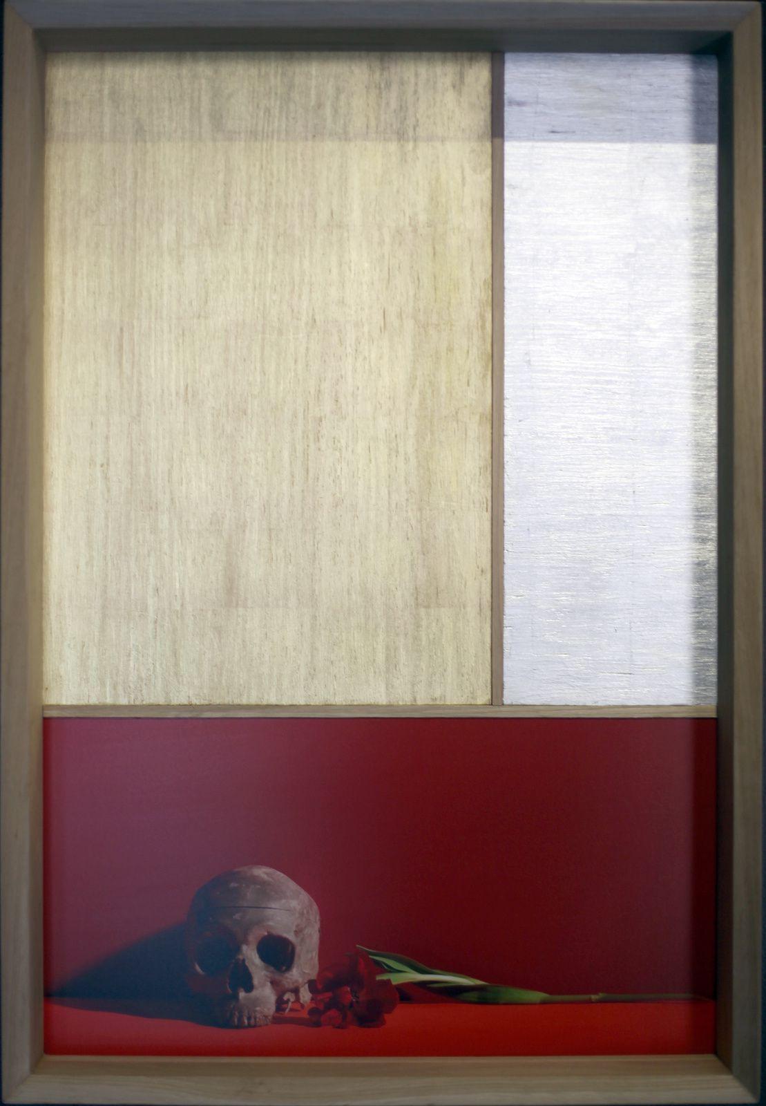 """""""No-Zarashi"""", 2017 de Satoshi SAÏKUSA - Courtesy Galerie Da-End © Photo Éric Simon"""