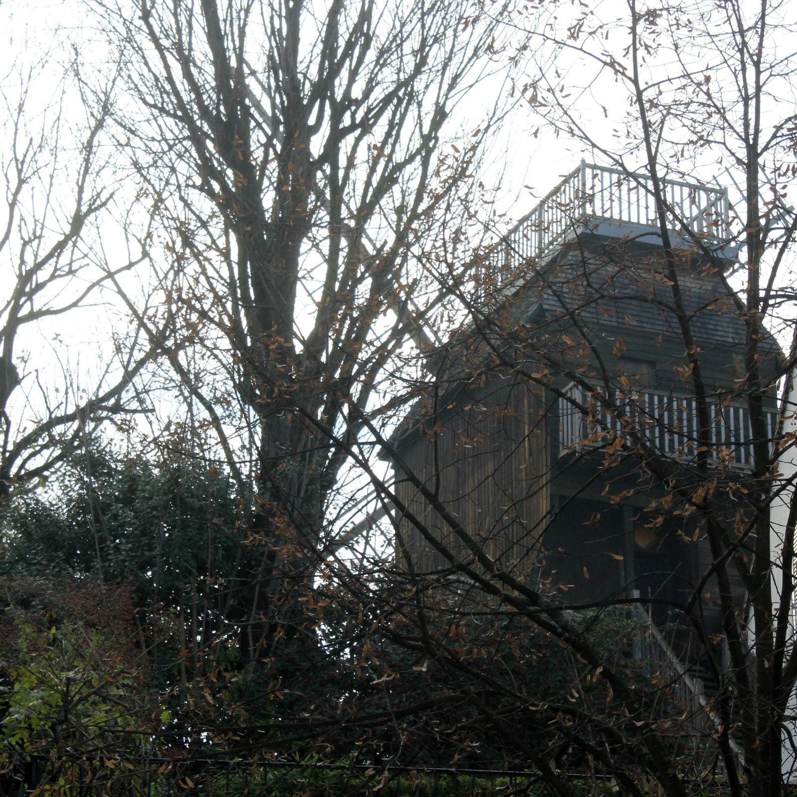 le moulin qui montre son derrière à l'avenue Junot!