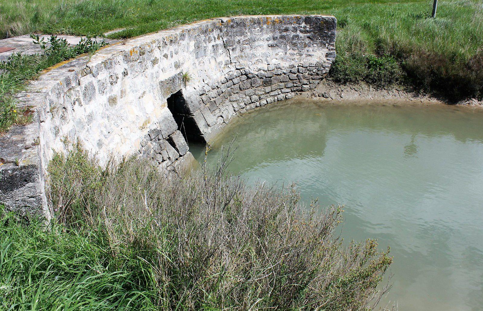 """Le bassin de retenue (le """"monard"""") à moitié plein!"""