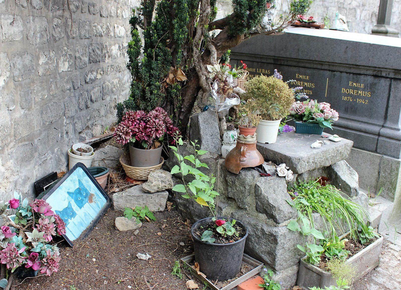 tombe de Steinlen