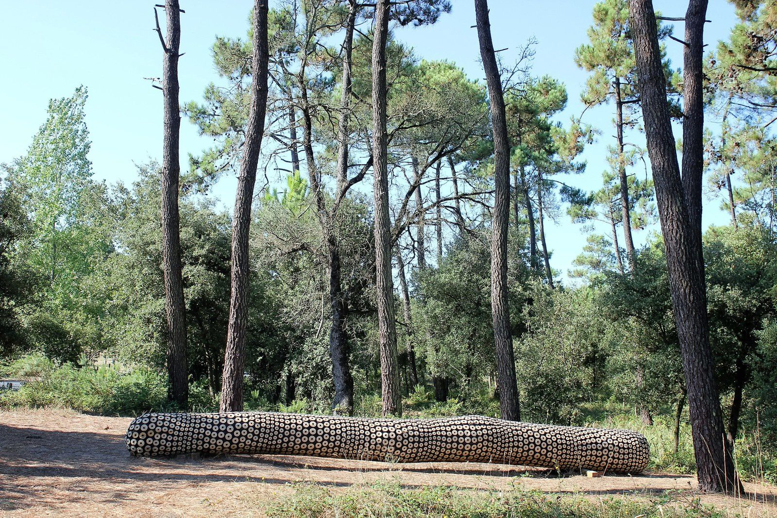 Oléron. Biennale Art et Nature. Amers.