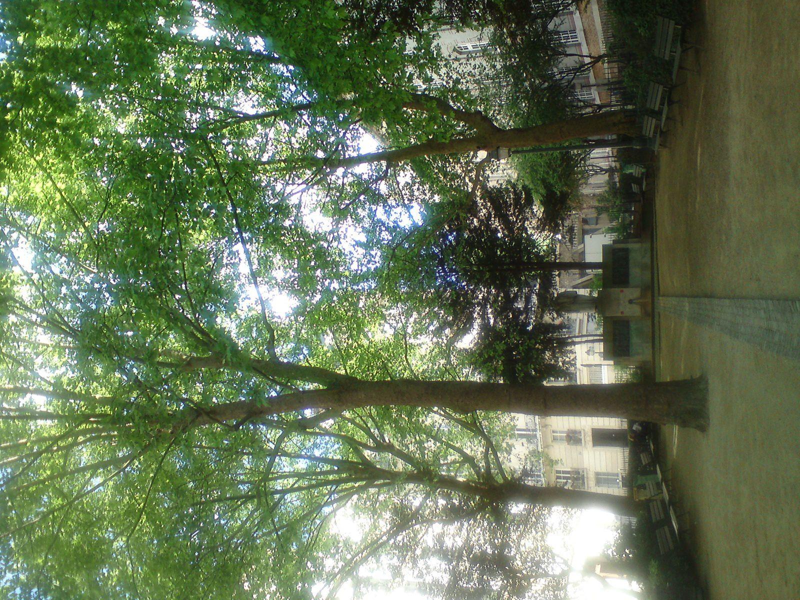 Kermesse à Montmartre le 18 mai
