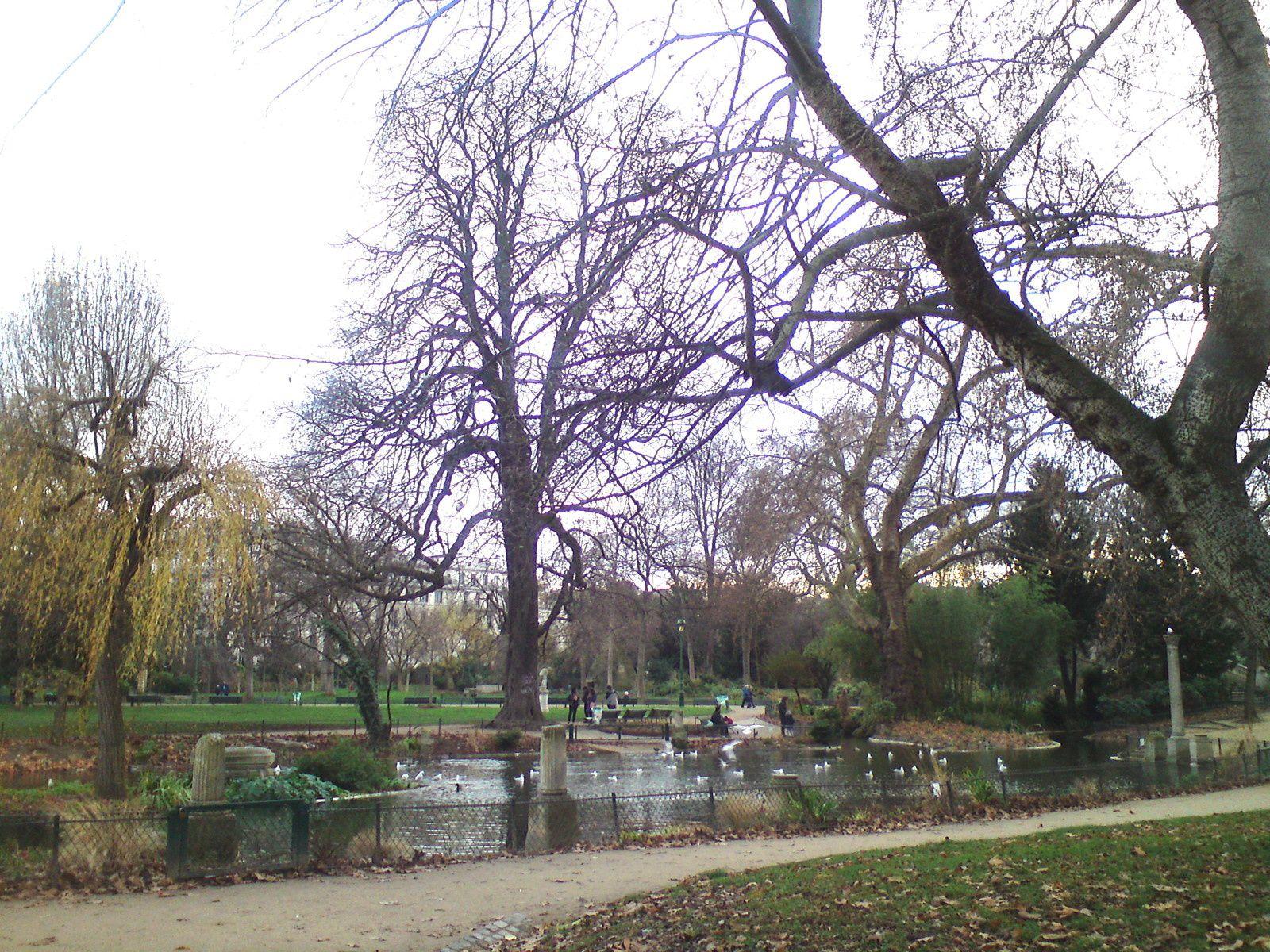 Balade au parc Monceau début janvier