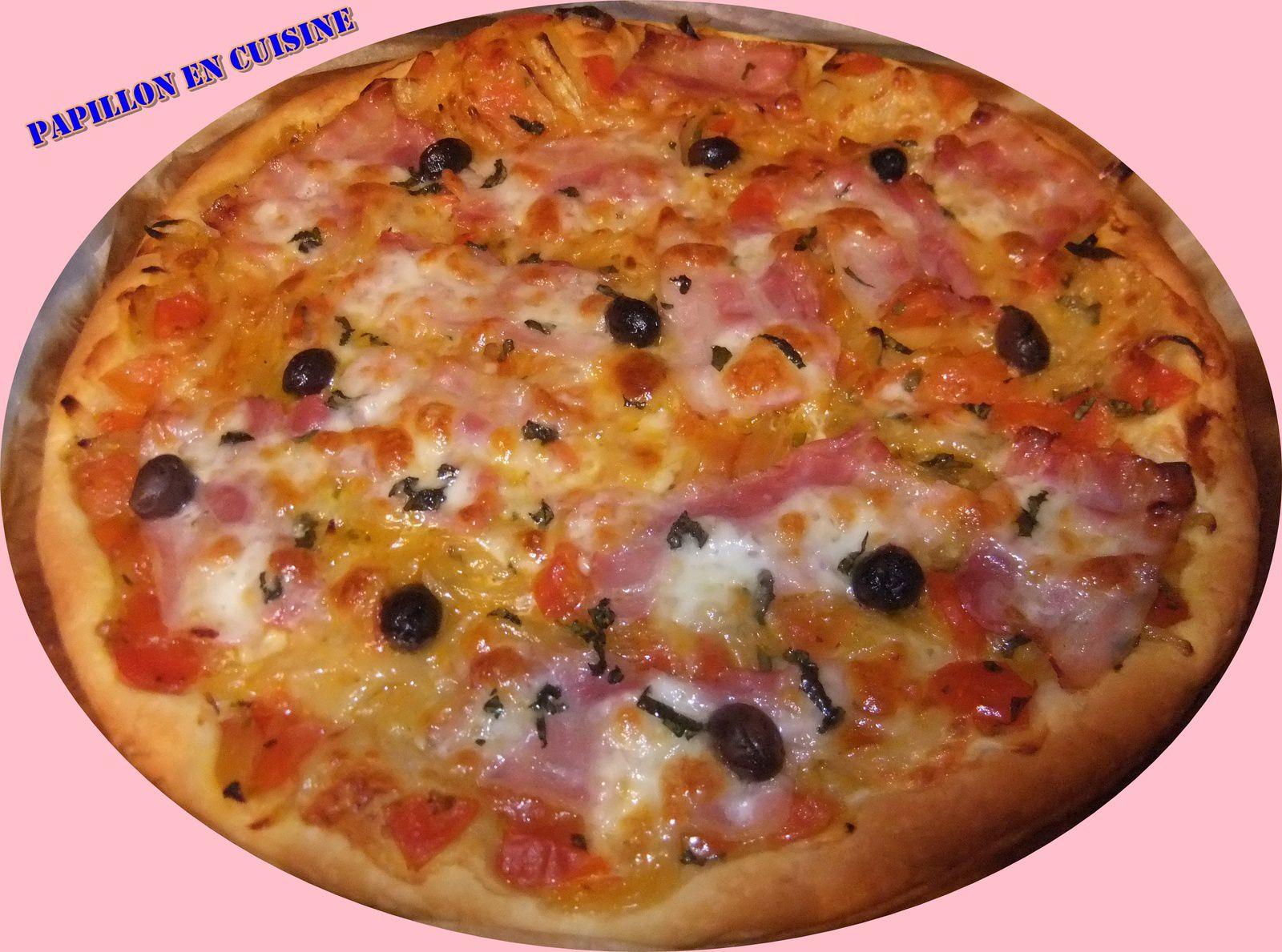 Recette: Tarte fine oignons, tomates, mozzarella