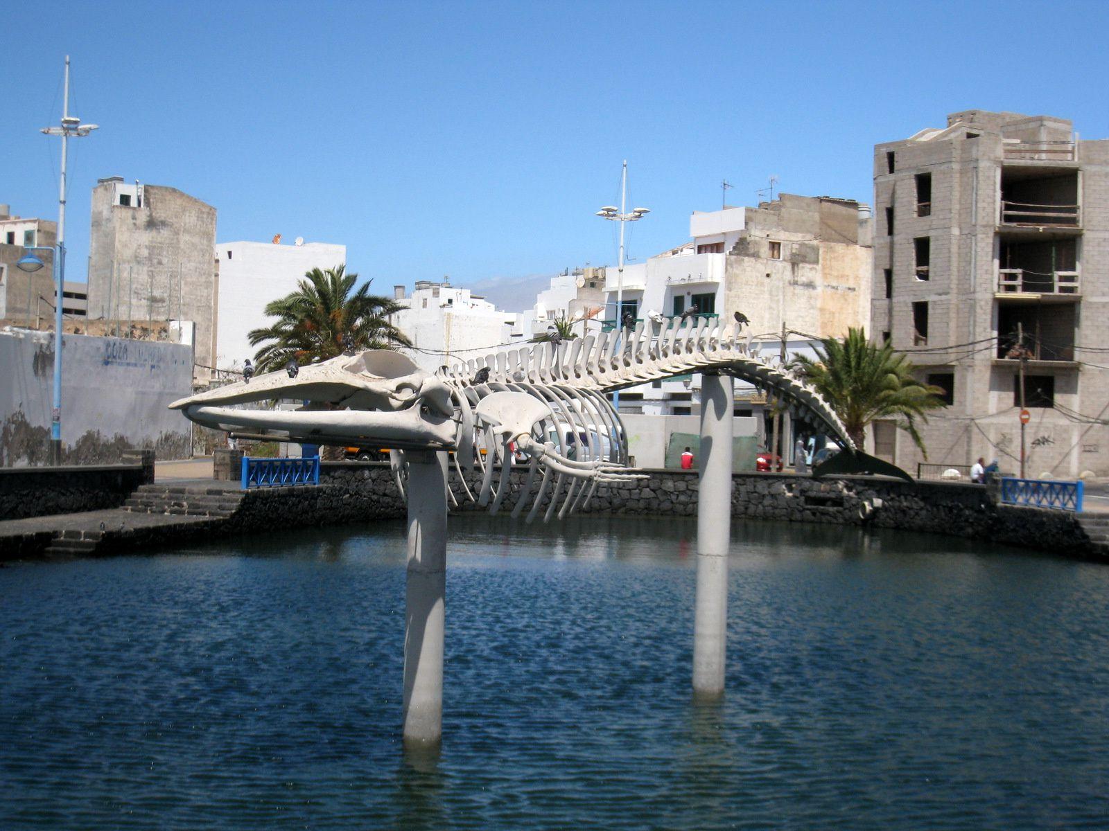 Sculptures à Arrecife (île de Lanzarote), 2/3