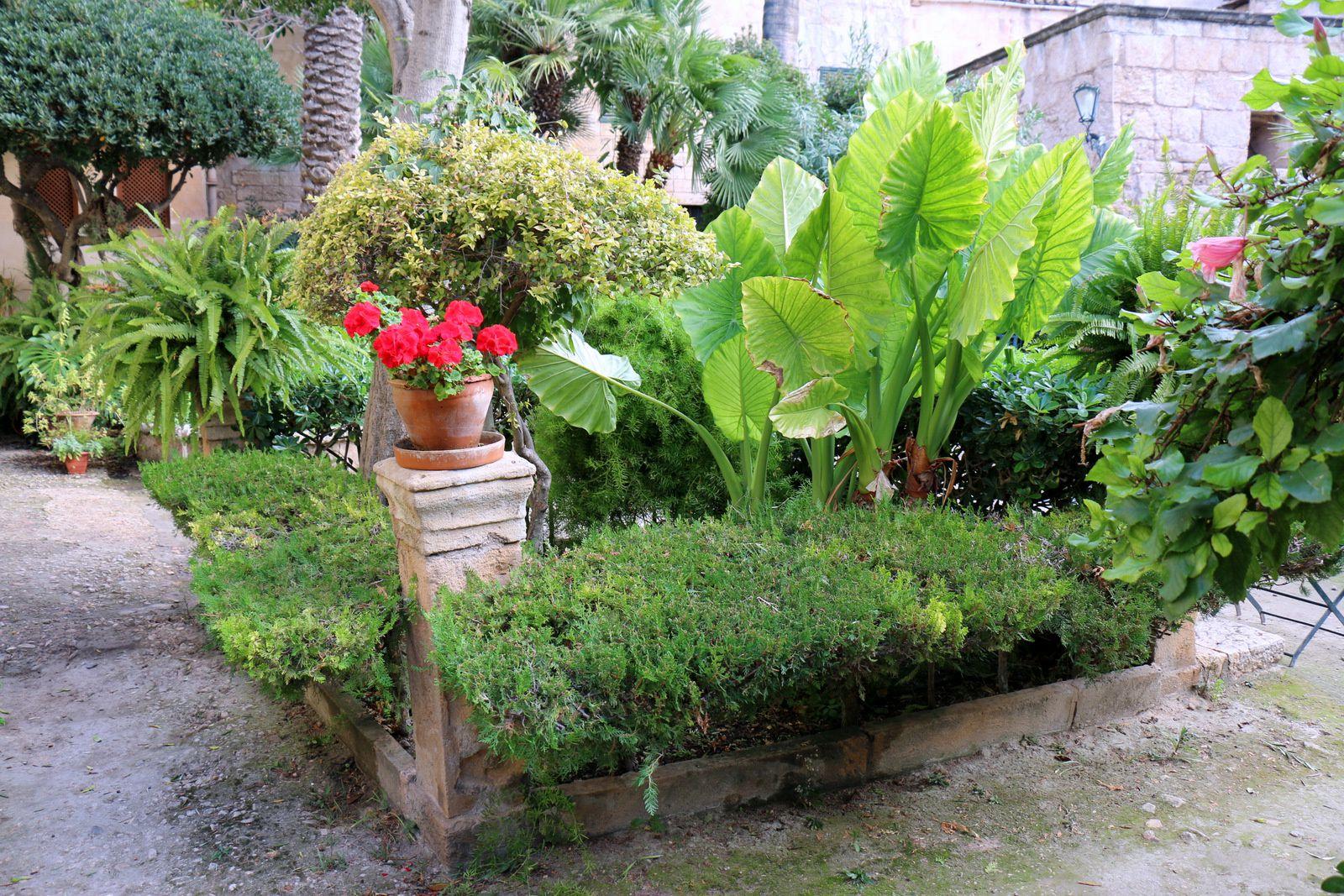 bains arabes de palma de majorque le jardin le blog de cbx41. Black Bedroom Furniture Sets. Home Design Ideas