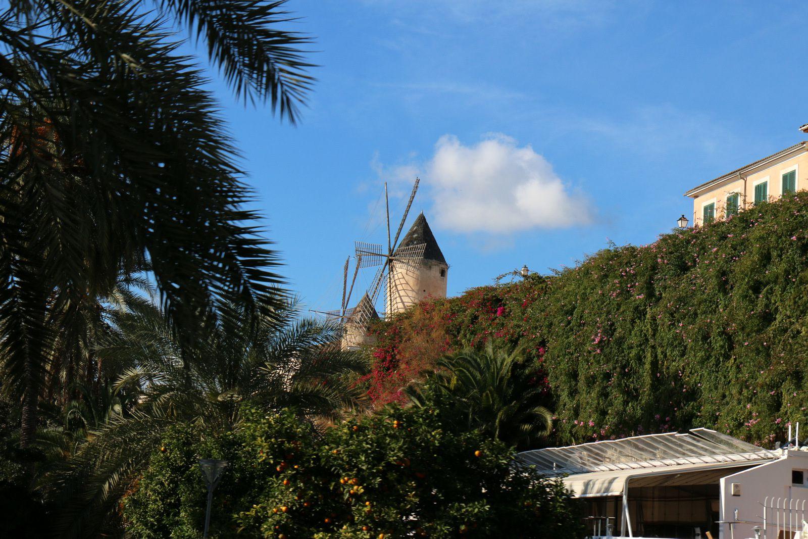 Ramon Llull et moulins