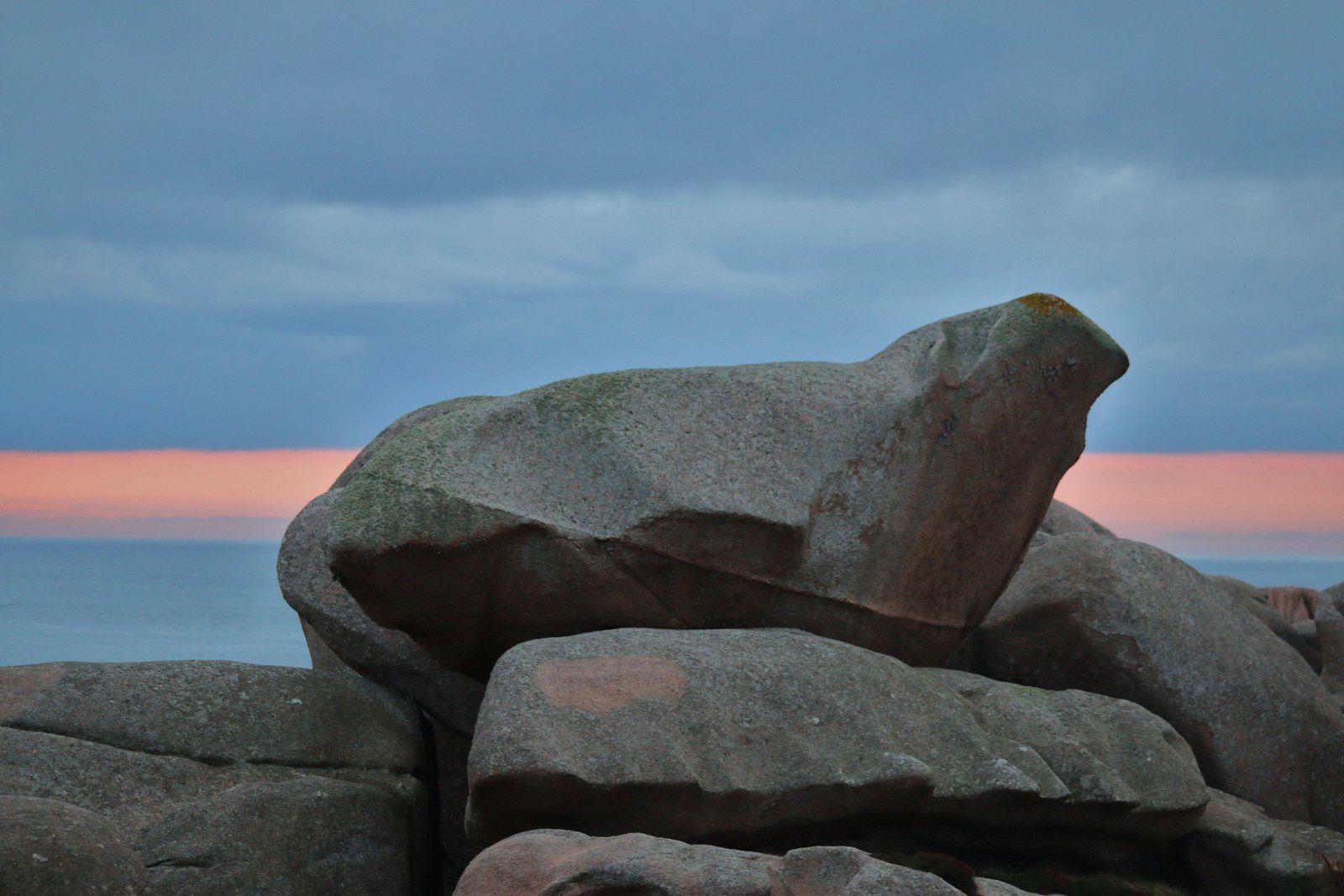 Rochers remarquables des landes de Ploumanac'h (2/2)