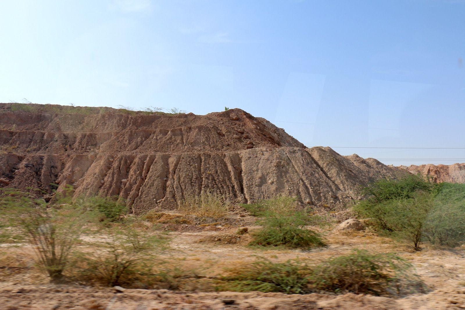 Désert du Thar, Rajasthan (Inde)