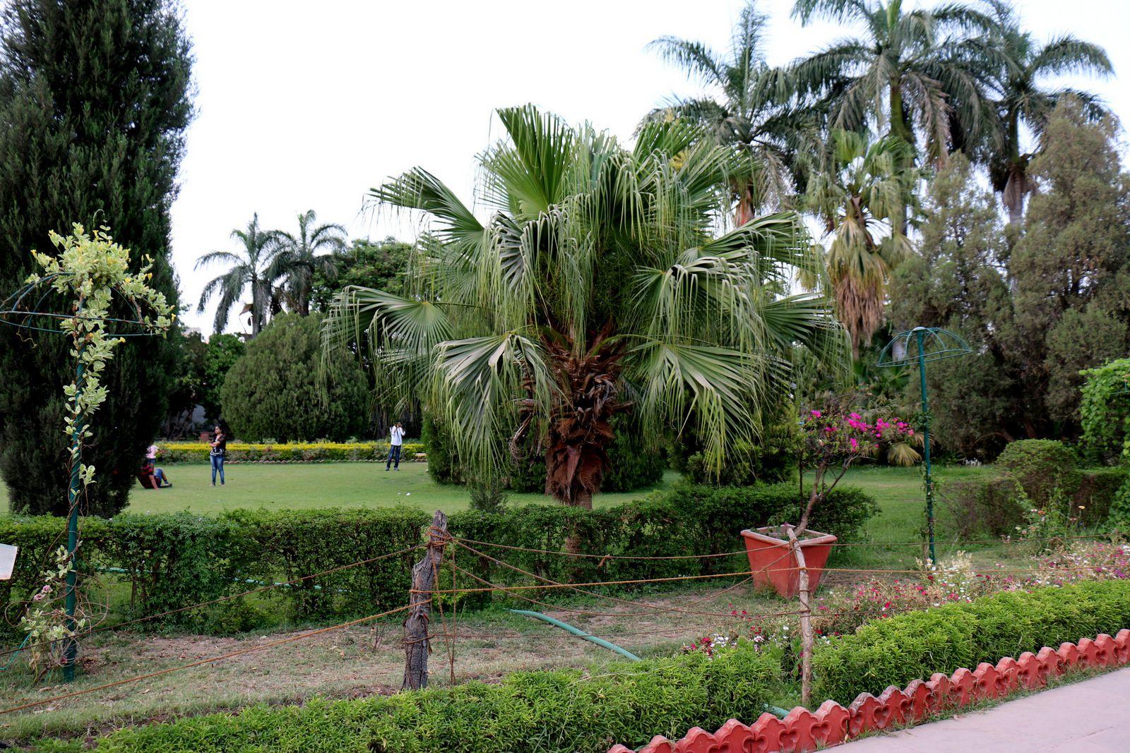 Jardin &quot&#x3B;Sahelion Ki Bari&quot&#x3B;, Udaipur, Inde