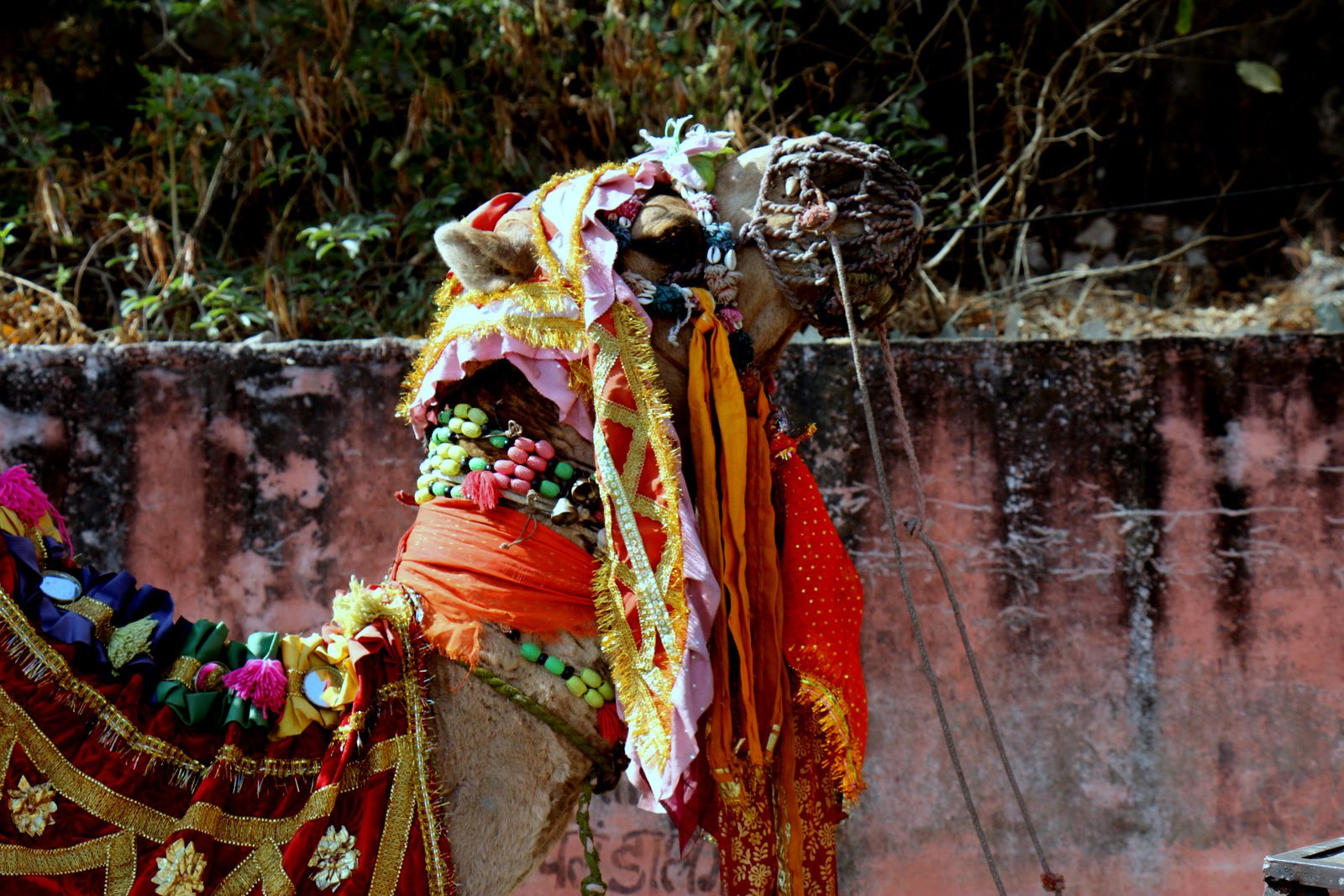 Monsoon palace sajjan Garh,  Arsi Vilas et Mohan Mandir, lac Pichola (Rajasthan, Inde)